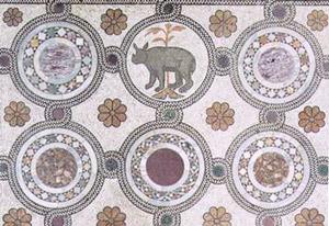 pavimento-basilica-rinoceronte