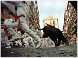 caccia al toro in spania