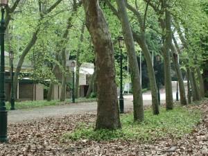 biennale gardens